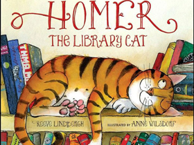 Homer the cat 3